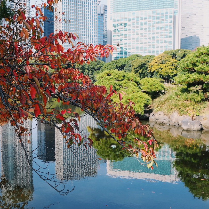 Skyscrapers reflected in the waters of Kyu Shiba Rikyu Gardens