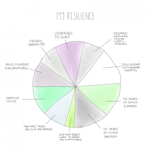 A pie chart of my resilience