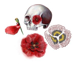 Illustration of a skull and poppies by Tiffany Lovage